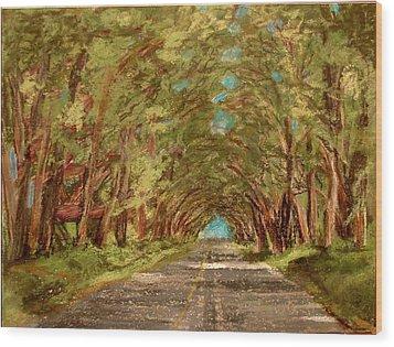 Kauiai Tunnel Of Trees Wood Print by Joseph Hawkins