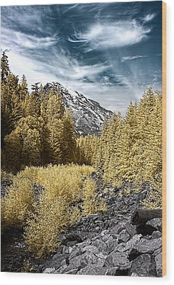 Kautz Creek Wood Print