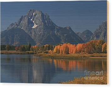 Kayak At Oxbow Bend Wood Print by Clare VanderVeen