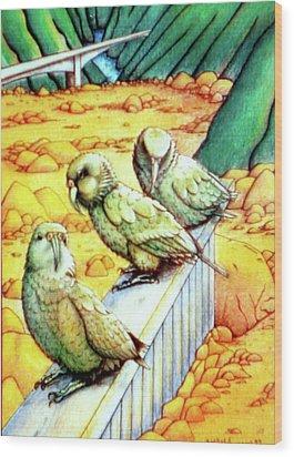 Kea Wood Print by Barbara Stirrup