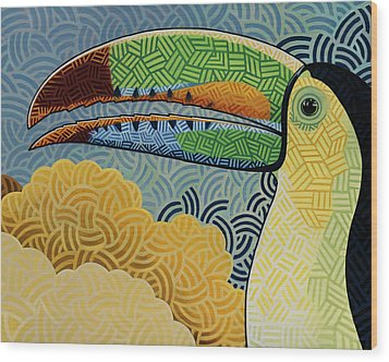 Keel-billed Toucan Wood Print by Nathan Miller