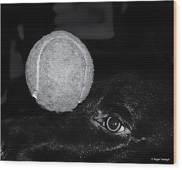 Keep Your Eye On The Ball Wood Print by Roger Wedegis