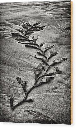 Kelp Snake Wood Print