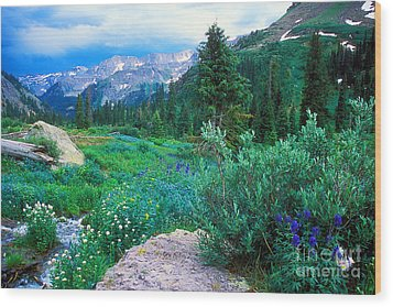Wood Print featuring the photograph Kennebec Pass by Arthaven Studios