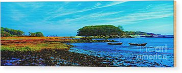 Wood Print featuring the photograph Kennepunkport Vaughn Island  by Tom Jelen