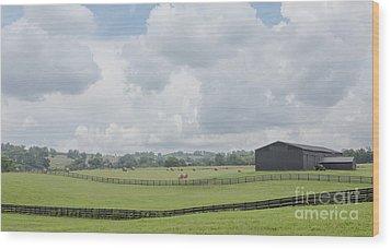 Kentucky Farm Wood Print by Kay Pickens