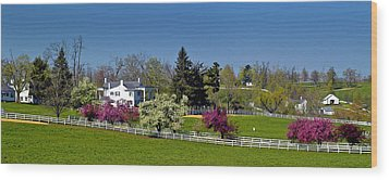 Kentucky Horse Farm Wood Print