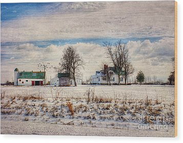 Kentucky Snow Day Wood Print by Darren Fisher