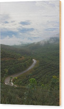 Wood Print featuring the photograph Kerala Tea Plantation by Sonny Marcyan