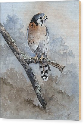 Kestrel Perch Wood Print by Mary McCullah