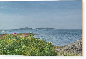 Wood Print featuring the photograph Kettle Cove by Jane Luxton
