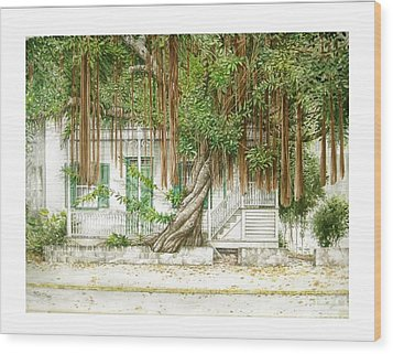 Key West Banyan Wood Print
