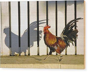 Key West Rooster Wood Print