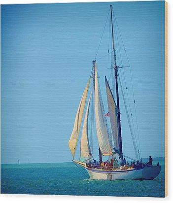 Key West Sailing Wood Print by Pamela Blizzard