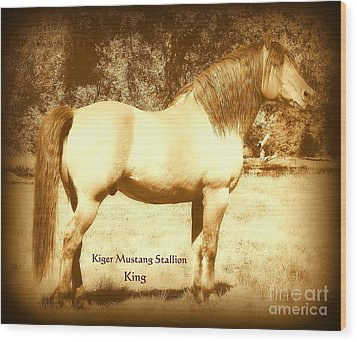 Kiger Mustang Stallion King Sepia Wood Print by Jodie  Scheller