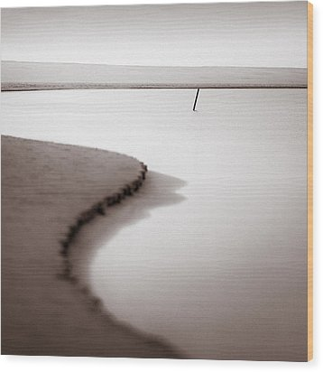 Kijkduin Beach Wood Print by Dave Bowman