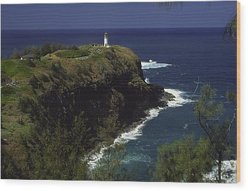 Kilauea Lighthouse Wood Print by Morris  McClung