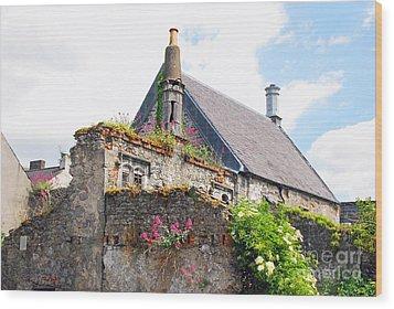 Kilkenny House Wood Print by Mary Carol Story