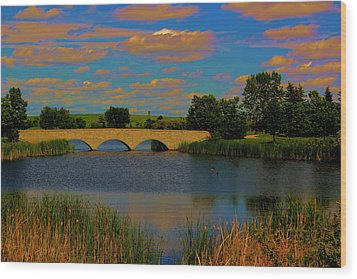 Kilkona Park Bridge Wood Print by Larry Trupp