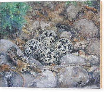 Wood Print featuring the drawing Killdeer Nest by Lori Brackett