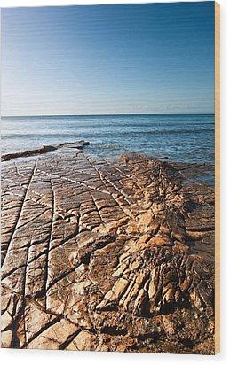 Kimmeridge Bay Seascape  Wood Print by Matthew Gibson