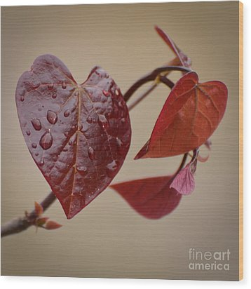 Kindness Can Change The World Wood Print by Kerri Farley