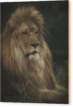 Wood Print featuring the photograph King by Chris Boulton