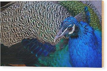 King Of Colors Wood Print