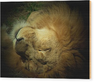 King Of Peace,lion Wood Print