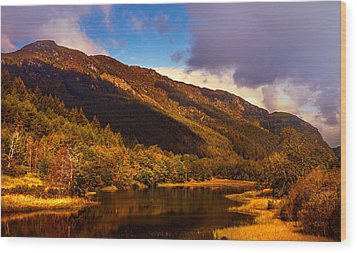 Kingdom Of Nature. Scotland Wood Print by Jenny Rainbow