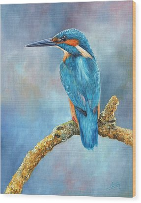Kingfisher Wood Print by David Stribbling