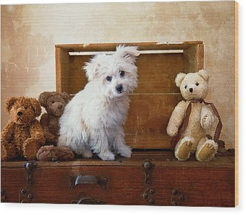 Kip And Friends Wood Print