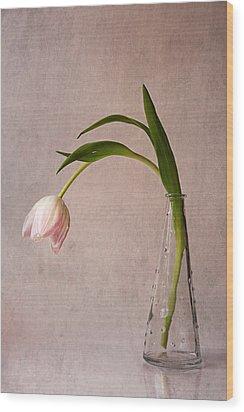 Kiss Of Spring Wood Print by Claudia Moeckel