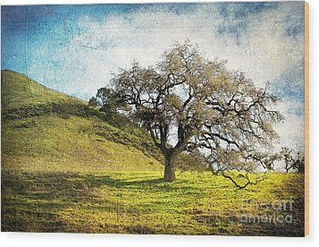 Kiss The Earth Wood Print by Ellen Cotton