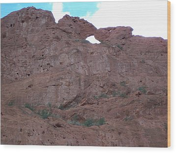 Wood Print featuring the photograph Kissing Camels by Sheila Byers