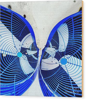 Kissing Fans Wood Print by Amy Cicconi
