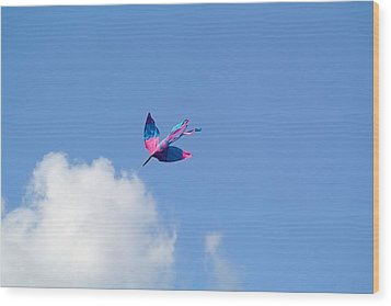 Wood Print featuring the photograph Kite At The Fort  by Toni Martsoukos