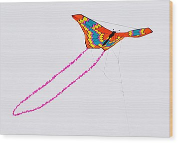 Kite With Pink Tail Wood Print by Michael Bruce
