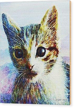 Kitten  Close Wood Print by Hartmut Jager