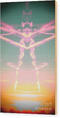 Wood Print featuring the photograph Kitty Cat Contrail Ballerina by Karen Newell