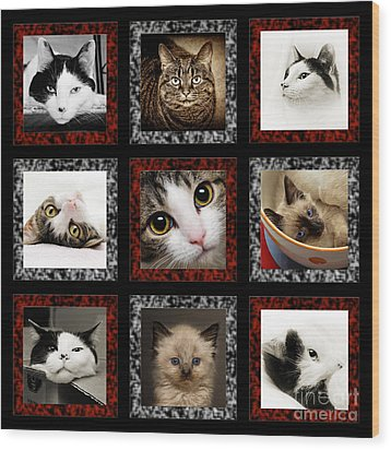 Kitty Cat Tic Tac Toe Wood Print by Andee Design
