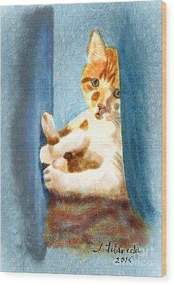 Kitty In A Corner Wood Print by Judy Filarecki