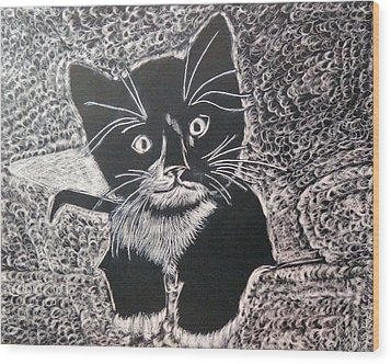 Wood Print featuring the drawing Kitty In Blanket by Lisa Brandel