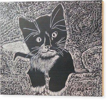 Kitty In Blanket Wood Print