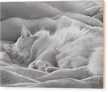 Kitty In The Covers Wood Print by Suzanne Schaefer