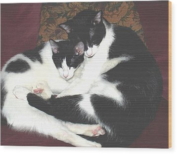 Kitty Love Wood Print by Marna Edwards Flavell