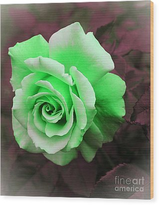 Kiwi Lime Rose Wood Print by Barbara Griffin