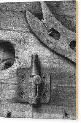 Knick-knack Wood Print by Tom Druin