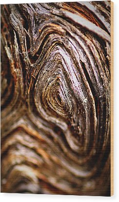 Knots Wood Print by Jacqui Collett