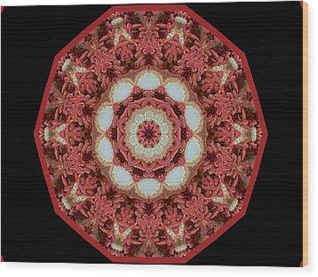 Knotty Twists Kaleidoscope Wood Print by Aliceann Carlton
